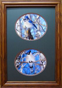 Blue Jay Giclee photo Signed & Numbered Framed & Matted unique cabin wall decor