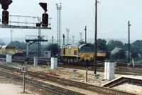 PHOTO  CLASS 56 LOCO NO 56043 - 59103 - 33042 LEFT TO RIGHT AT WESTBURY 1991