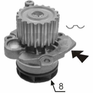 Protex Water Pump PWP8079 fits Volkswagen Jetta 2.0 TDI (1K)