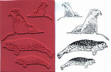 unmounted rubber stamps Sea Lion and Harbor Seal collection  4 images