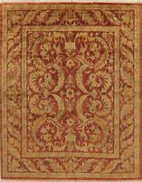 Agra Oriental Area Rug Wool Hand-Knotted All-Over Floral NEW 8x10 Indian Carpet
