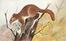 c1914 Art Postcard Red Squirrel on Tree Stump A/S Harvey Unposted