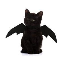 PT_ Cn _ Halloween Animali Domestici Cane Gatto Nero Ali Pipistrello Vampiro C