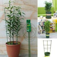 Climbing Plant Support Cage Garden Trellis Flowers Rings 3 Super Stand Toma P2P1