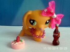 LPS BASSOTTO # 2597 CON ACCESSORI COLA TORTA
