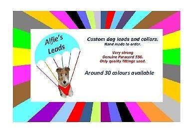 Alfie's Leads
