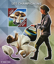 Niger 2015 MNH Mushrooms 1v S/S Fungi Champignons Phaeolepiota aurea Stamps