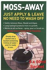 PATIO & SLAB CLEANER - REMOVE MOSS ALGAE MOULD GROWTH EVERBUILD WIZARD. 3 x 50ml
