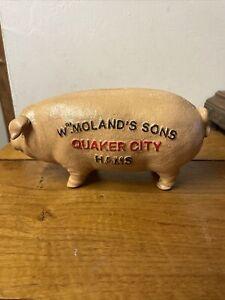 Cast Iron Piggy Bank Money Box