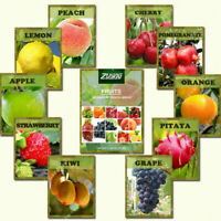 550 Fruit Organic Mixed Tree Seeds Delicious Plant Bonsai for Home and Garden