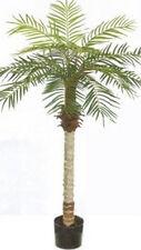 5 foot Artificial Phoenix Palm Tree Plant Pot Arrangement Patio Deck Sago Date