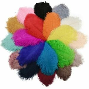 10Pcs/Lot Colorful 25-30cm Ostrich Feathers for Crafts Wedding Party Decoration