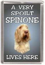 "Italian Spinone Dog Fridge Magnet  ""A VERY SPOILT SPINONE LIVES HERE"""