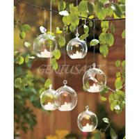 Neu Hängende Glass Vase Blumenvase-Pflanze Glas Wandvase 8cm Ball Form
