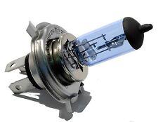 Ski-Doo Formula Mach Z 800, 1998-2002, Xenon Bight White Headlight Bulb