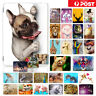 Animal Front&Back Smart Case Cover for iPad 2 3 4 5 6 Mini Air Pro 9.7 10.5 F003