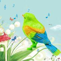 Vocale Commande Parlant Perroquet Animal Chant Oiseau Son Activé Musical Jouet
