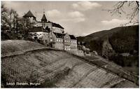 Gernsbach Murgtal alte Postkarte ~1950/60 Blick auf Schloß Eberstein Weinberge
