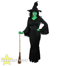 WICKED WITCH COSTUME GREEN FACEPAINT WITCHES HAT ADULTS HALLOWEEN FANCY DRESS