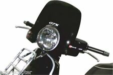 Windschutzscheibe Piaggio Vespa GT GTS 125-250-300 Windschild Getönt Chrom NEU