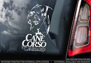 Cane Corso - Car Window Sticker - Corz Molosser Italian Mastiff Dog Sign - TYP4