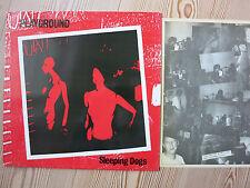 PLAYGROUND - SLEEPING DOGS   LP Vinyl  DECOY