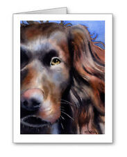 Boykin Spaniel Set of 10 Note Cards With Envelopes