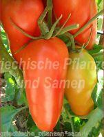 🔥 🍅 Hochloma Flaschen-Tomate aus Russland alte Sorte 10 frische Samen Balkon