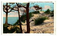 Dunes along Lake Michigan at Saugatuck, MI Postcard *5N(3)28
