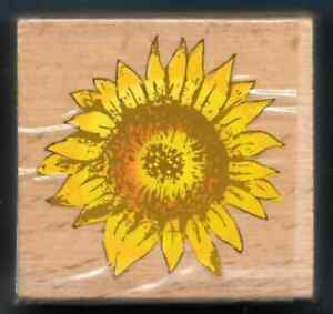 SUNFLOWER HEAD FALL Flower Seads AUTUMN NEW wood mount CRAFT HOBBY RUBBER STAMP