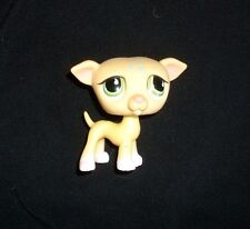 875 LITTLEST PET SHOP BABY GREYHOUND WHIPPET YELLOW PUPPY DOG GREEN EYES LPS PUP