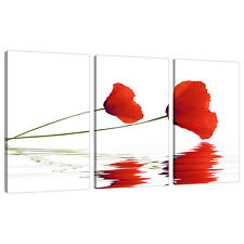 Set of 3 Part Red Canvas Wall Art Pictures Poppy Poppies Prints 3029