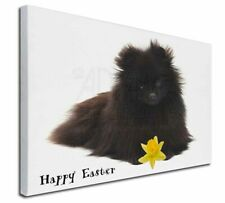More details for 'happy easter' pomeranian x-large 30