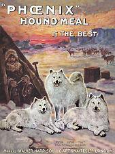 SAMOYED VINTAGE DOG FOOD ADVERT ARTIC SCENE ON LOVELY GREETINGS NOTE CARD