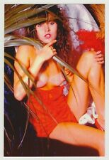 Postcard Pinup Risque Nude Natural Girl Very RARE Photo Post Card 9902