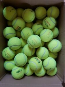 66 Used Wilson US Open Tennis Balls