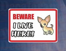 BEWARE I LIVE HERE - CHIHUAHUA House/Home Window/Door/Porch Printed Sticker