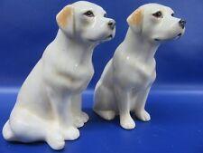 Yellow Labrador Salt and Pepper Pots - Labrador Cruet - Gift Boxed