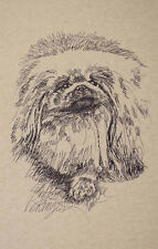 Pekingese Dog Art Portrait Print #236 Kline Draws Your Dogs Name Free. Nice Gift