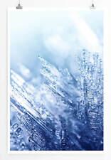 60x90cm Künstlerische Fotografie – Eiskristalle im Licht