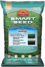 Pennington Smart Seed Fescue/Bluegrass Sun & Shade Grass Seed 3 lb.