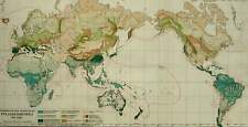 1897 Antique WORLD MAP of VEGETATION and Plants. BOTANY. 123 years old chart