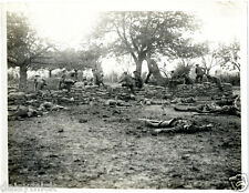 """British Army 2nd Leicesters Bout de Ville France 1915 World War 1 5x4"""" Photo bl"""