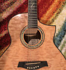 Ibanez Exotic Wood - Acoustic/Electric Guitar