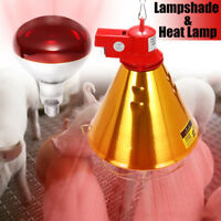 175/275W Poultry Heat Incubator Lamp Infrared Bulb Light For Reptile Pet  AU