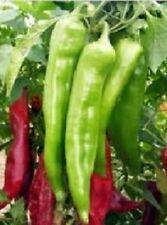 Pepper Seeds 200 Hot Big Jim CHILI PEPPER