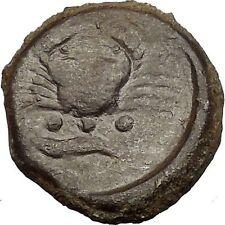 AKRAGAS in SICILY 425BC Eagle Rabbit Crab Crayfish Ancient Greek Coin i52520