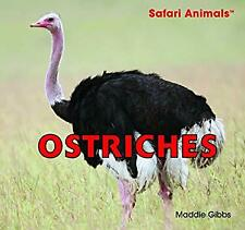 Ostriches Library Binding Maddie Gibbs