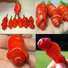 20PCS DIY Red Organic Peter Pepper Seeds Special Funny Garden Capsicum Annuum