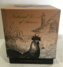 Natural Wonders Of Autumn Pumpkin Spice Candle With Gift Box